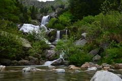 La cascata nella foresta (supersky77) Tags: oropa piemonte alps alpi alpes alpen cascata waterfall longexposure stream