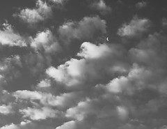 Bellevue BW Exercise 6-26-1.jpg (Michael Burke Images) Tags: bw bellevue moon clouds