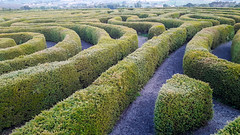 peace maze castlewellan (sean and nina) Tags: castlewellan ireland lake arboretum maze park nature county co down northern north eire irish forest grounds water outdoor rural country countryside green hedges trees view stunning beauty natural summer june 2019 tranquil peaceful peace gardens garden tourism reflection