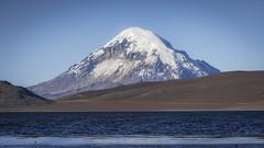 Sajama (Andres Puiggros) Tags: d500 altiplano arica chile lauca nature nikon travel andes mountain cordillera chungara parinacota