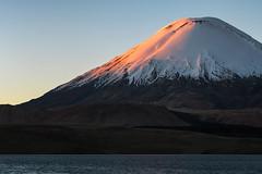 Parinacota Volcano (Andres Puiggros) Tags: d500 altiplano arica chile lauca nature nikon travel andes mountain cordillera chungara parinacota