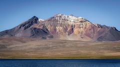 Quisiquisine (Andres Puiggros) Tags: d500 altiplano arica chile lauca nature nikon travel andes mountain cordillera chungara parinacota