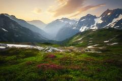 Mountain in the cascades (Wind Walk) Tags: park north national cascades mountain sunrise washington wildflower