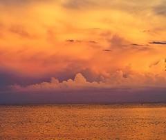 Sanibel, Sunset 6/27/19 #nofilter #sunsetsofinstagram #sunset #olympusinspired #mzuiko40150mm #olympuspenf #fierysky #skyscape #cloudscapes #clouds #orangeskies #sunsetchaser #mirrorlessrevolution #mirrorlesscamera #mirrorlessgeeks #mft (Sivyaleah (Elora)) Tags: sanibel island florida vacation june 2019 sunset orange clouds seascape olympus penf pen f telephoto skyscape cloudscape mirrorless mft