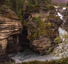 Athabasca Falls 3 (www78) Tags: athabasca falls jasper national park alberta canada