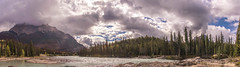 Athabasca River at Falls (www78) Tags: athabasca canada icefieldsparkway jasper nationalpark falls national park alberta