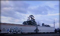 mook (timetomakethepasta) Tags: mook mhc nfm freight train graffiti art grainer hopper timx