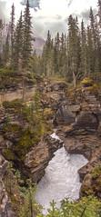 Athabasca Falls 2 (www78) Tags: athabasca falls jasper national park alberta canada