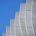 fins in a blue sky