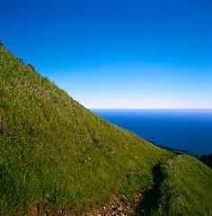 Mt. Tamalpais, Near Stinson, CA (pirate-manners) Tags: rollei rolleiflex sl66 fujifilm velvia landscape california stinson highway1 pacific ocean hiking tam tamalpais
