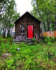 Red Door (Pennan_Brae) Tags: neat cute tinyhome home house small nature thewoods logcabin red reddoor architecture cabin