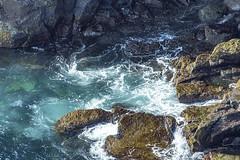 Látrabjarg cliff base (Al Case) Tags: latrabjarg iceland al case landscape ocean cliff base nikon d500 nikkor 300mm f4e greenland sea arctic atlantic