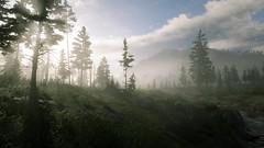 Painting Landscapes | RDR2 (Razed-) Tags: painting landscape foggy red dead redemption 2 rdr2 rockstar games playstation 4 ps4 pro