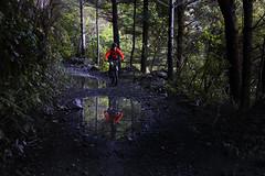 Karapoti Gorge (Wozza_NZ) Tags: reflection puddle puddles karapoti gorge akatarawa akatarawas upperhutt wellington nz mtb mountainbike newzealand cycle offroad gravel bush ride winter groundeffect