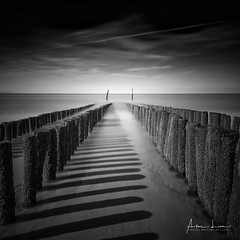 From The Shore Into The Sea I (Alec Lux) Tags: bw bnw nieuwvliet art beach black blackandwhite breakwater coast coastline exterior fine fineart haida haidafilters landscape longexposure nature netherlands ocean outdoor outside poles sand sea seascape white