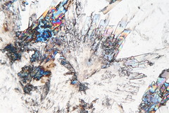 Lactose (b.dussard25) Tags: microphotographie abstract abstrait canon macrophotographie microphotography macrophotography lactose sucre