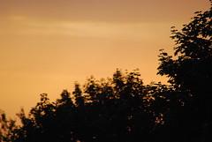 Schallet, frohe Preisgesänge (amras_de) Tags: morgen matí ráno morning mateno mañana goiz aamu matin maidin mattino rytas ochtend morgon manhã forenuin sonnenaufgang ortus solopgang sunrise orto päikesetõus eguzkiirteera auringonnousu leverdesoleil aurora solisortus sauletekis lekts zonsopgang solrenning soloppgang swit nascerdosol rasarit soluppgång
