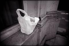 Vous oubliez votre cadavre (Gauthier V.) Tags: toycamera wideangle plastique urbain filmphotography blackwhite déchet bruxelles régiondebruxellescapitale belgium vivitarultrawideslim