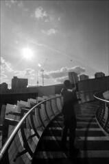 kites (generalzorn) Tags: pentaxk1000 vivitar19mm ilforddelta100 film coventry city millenniumplace kites