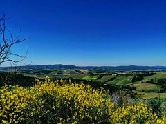 📍Vergelle, Toscana, Italy . . . #like #follow #share #comment #subscribe #castelnuovodellabate #montalcino #borghettomontalcino #tuscany #tuscanygram #italy #italy #italia #santantimo #valdorcia #travel #travelblogger #travelphotography #tra (borghettob) Tags: valdorcia tuscany castelnuovodellabate holiday travelphotography santantimo italia montalcino travelholic share igtravel travelgram tuscanygram italy travelling discover like subscribe follow borghettomontalcino travelblogger travels comment travel bedandbreakfast