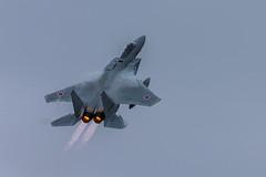 Mitsubishi F-15J/DJ (Rami Khanna-Prade) Tags: jasdf japan avgeeks military militaryaviation japaneseairselfdefenceforce