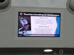 P1040371-0405190930a_HDR (Alan Studt) Tags: alanstudt galapagosvacationapril2019 guayaquil aeropuertointernacionaljoséjoaquíndeolmedo joséjoaquíndeolmedointernationalairport gye lgg6 snapseed