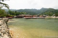 Itsukushima Shrine (takashi_matsumura) Tags: itsukushima shrine hiroshima ngc nikon d5300 architecture 厳島神社 広島 hatsukaichi afp dx nikkor 1020mm f4556g vr