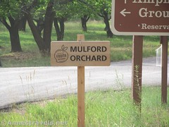 Mulford Orchard (Annes Travels) Tags: capitolreefnationalpark utah apricots fruit orchard fruita pickyourown sign