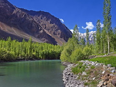 Suru valley !! (Lopamudra !) Tags: lopamudra lopamudrabarman lopa landscape ladakh jk india suru suruvalley valley vale tree trees river stream water waterscape mountain mountains ridge himalaya himalayas highaltitude highland clouds cloud sky skyscape sunshine sunlight light placid tranquil silence solitude beauty beautiful picturesque
