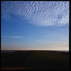 Wadden Sea (Jens Jacob - Hej!) Tags: twinlensrefleks fujirdpiii fuji slide mediumformat 6x6 tlr film wind turbine rollei e6 v700 mill perfectionv700 zeiss epsonperfectionv700 sky mellemformat 120 rolleiflex28e windmill windturbine