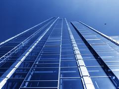 bird (Darek Drapala) Tags: birds bird blue sun sky building architecture glass reflection reflects panasonic poland polska panasonicg5 warsaw warszawa city high civilization urban
