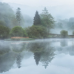A mysterious place with no name. . . (Pete Rowbottom, Wigan, UK) Tags: lakedistrict lakedistrictnationalpark lakedistrictinteresting uklandscape landscapephotography trees waterreflections reflections peterowbottom nikond810 earlymorning sunrise fog mist mountains ambleside river elterwater atmosphere lpoty stillwater serene serenity beauty natural nature art green spring 2019 square landscapesunrise cumbria calm sheep peaceful detail dreamy delicate ethereal