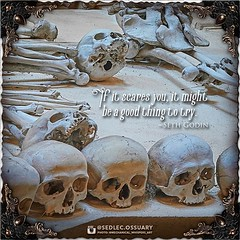 """""""If it scares you, it might be a good thing to try."""" -Seth Godin⠀ .⠀ 💀 Sign up on our mailing list for exciting special announcements! 💀⠀ ☩ sedlecossuary.mechanicalwhispers.com ☩⠀ ☩ Or click link in bio. ☝️ ☩⠀ .⠀ .⠀ #SedlecOssuaryProje (Sedlec Ossuary Project) Tags: sedlecossuaryproject sedlec ossuary project sedlecossuary kostnice kutnahora kutna hora prague czechrepublic czech republic czechia churchofbones church bones skeleton skulls humanbones human mementomori memento mori creepy travel macabre death dark historical architecture historicpreservation historic preservation landmark explore unusual mechanicalwhispers mechanical whispers instagram ifttt"""