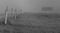 Einseitig (flori schilcher) Tags: schilcher zaun stadel nebel gras morgen