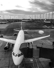 Airplane BA (tiagoalvar) Tags: travel hotel lounge flight reviews destinations milesandpoints regiãodacapital