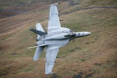 'Super Hornet' (benstaceyphotography) Tags: aviation military jet fast usn unitedstatesnavy lowfly sunliners benstacey lfa7 nikonuk fa18e