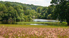 THE BOAT HOUSE (chris .p) Tags: berrington grounds lake nikon d610 vire herefordshire england nt parkland summer 2019 nationaltrust landscape tree trees june water boathouse