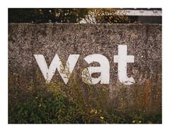 171022_141926_oly-PEN-f_antwerpen (A Is To B As B Is To C) Tags: aistobasbistoc b belgië belgium antwerpen antwerp cockerillkaai schelde river kaaien waterkering wall concrete texture wat poetry detail olympus penf color