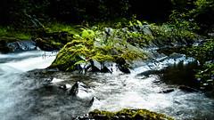 P8131310-Edit.jpg (me.darren) Tags: vegetation naturallandscape rapid river nature water stream watercourse waterresources naturereserve wilderness bodyofwater