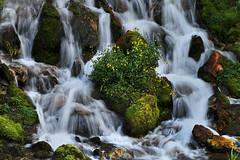 Options (arbyreed) Tags: arbyreed water waterfall janeefalls swiftcreek starvalleywyoming lincolncountywyoming creek spring rocks slowshutterspeed