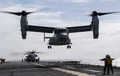 "Sailors direct an MV-22 Osprey to land on the flight deck of USS Wasp (LHD 1) (#PACOM) Tags: amphibioussquadronphibroneleven usswasplhd1 mv22osprey vmm268 flightoperations coralsea flightdeck atsea usfleetforcescommandareaofresponsibility usindopacificcommand ""usindopacom"