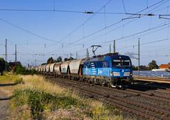 "[DE] Twistringen, 28.06.2019 -383 007 ""CD Cargo"" mit Getreidezug (Frederik L.) Tags: db bahn zug cargo fracht cd bahnhof lok lokomotive baureihe 193 vectron twistringen rollbahn sommer privatbahn train"