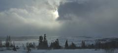 _DSC7005. Kuling, 23.mars 2019 (Berit Christophersen) Tags: stiffbreeze stivkuling valdres norway nature natur norge sonyalpha spring vestreslidre
