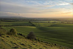 Aylesbury Vale (meniscuslens) Tags: aylesbury vale chiltern hills downs downland sunset buckinghamshire ivinghoe national trust pitstone windmill