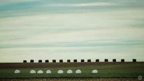 Pays Amish