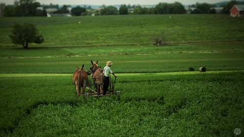 Pays Amish 2