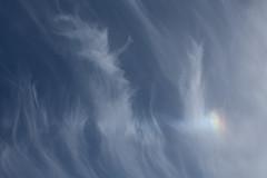 Clouds and Sundog 28 June 2019 (Sculptor Lil) Tags: atmosphericoptics sundog weather canon700d london clouds