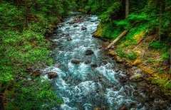 The Power Of Water (Jerry Nelson Photography) Tags: water river rapids rees forest rocks hdr landscape scenic