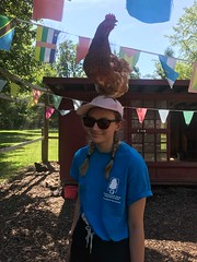 chickencounselor