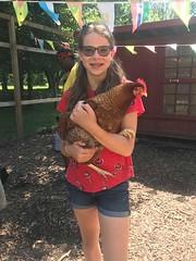 chickenbuddy